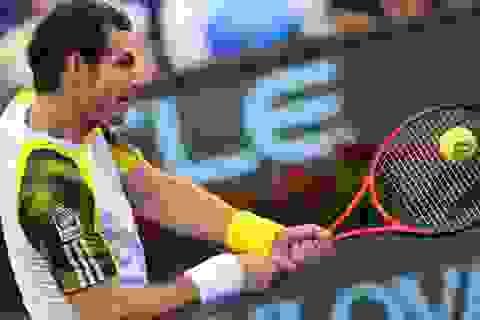 Murray bị loại, Del Potro vào bán kết với Djokovic
