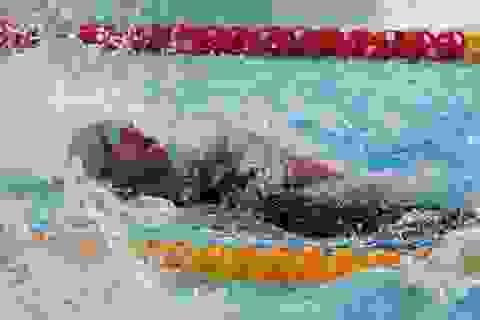 Vì SEA Games, vận động viên Việt Nam mất Tết