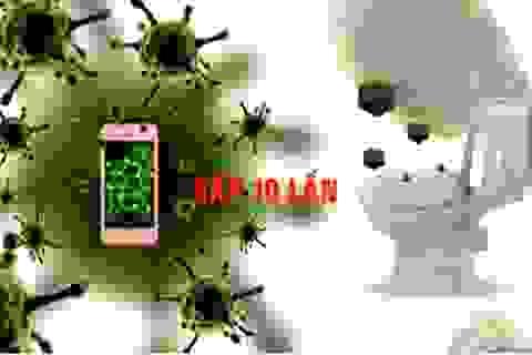 Ở đâu nhiều vi khuẩn nhất?