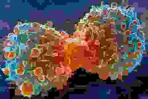 Ung thư sẽ khó đe doạ tính mạng người dưới 80 tuổi
