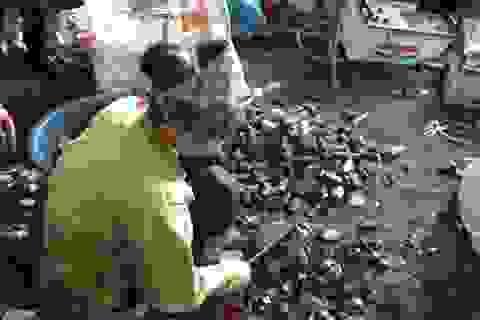 Những kim loại nặng dễ gây ngộ độc