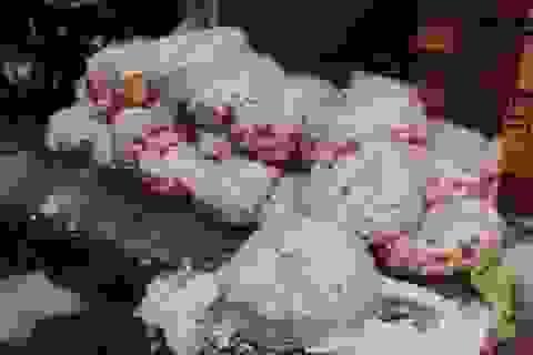 Phát hiện hàng trăm ký đầu gà, thịt heo thối