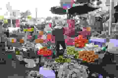 Cận Tết, giá trái cây và hoa tươi rục rịch tăng