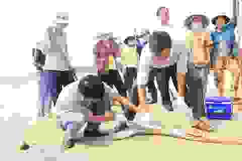 """""""Tẩy"""" sạch ô nhiễm ở vùng cá chết là nhiệm vụ hàng đầu"""
