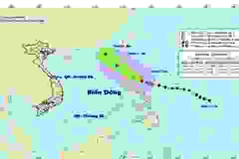 Dự báo bão luôn gặp sai số về vị trí tâm bão và cường độ!