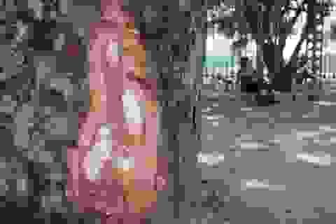 """Hà Nội: Lại xuất hiện """"vết cắt lạ"""" trên cây xà cừ đường Lê Duẩn"""