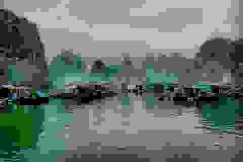 Mịt mờ khói phủ Hạ Long