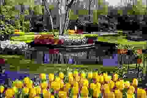 5 lễ hội mùa xuân đặc sắc không nên bỏ lỡ