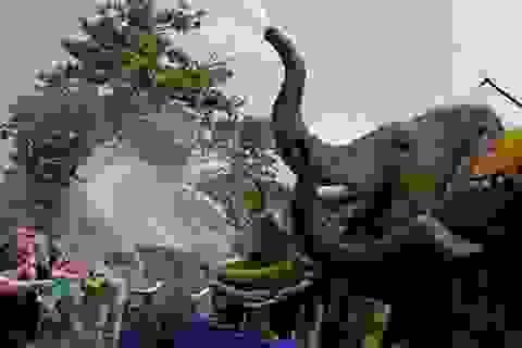 Thái Lan sôi động với lễ hội té nước lớn nhất thế giới