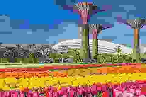 Kỳ nghỉ náo nhiệt tại Singapore