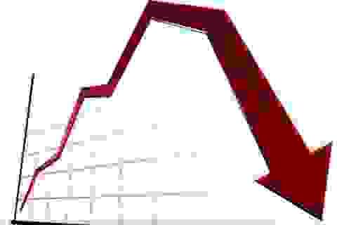 Hơn 250 mã giảm điểm, VN-Index bật khỏi mốc 500