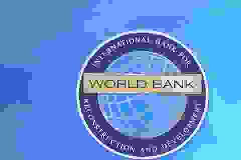 Gian lận, 1 doanh nghiệp Việt bị WorldBank cấm cửa