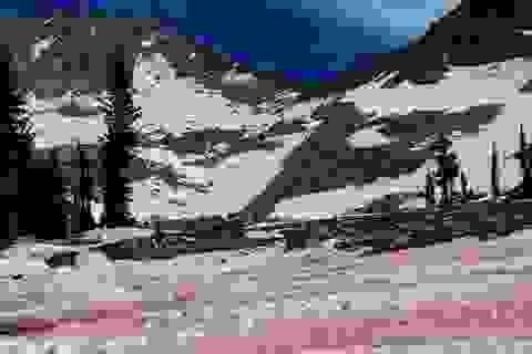 """Vẻ đẹp kỳ ảo của """"tuyết đỏ như màu dưa hấu"""""""