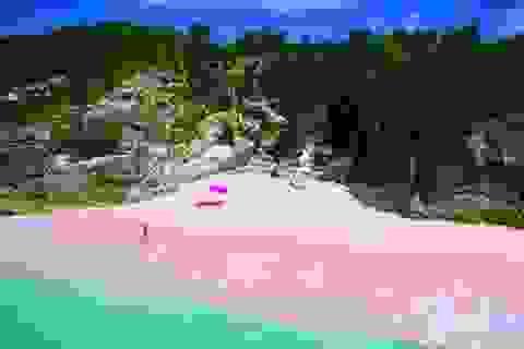 Mê mẩn vẻ đẹp những bãi biển có màu sắc sặc sỡ nhất thế giới