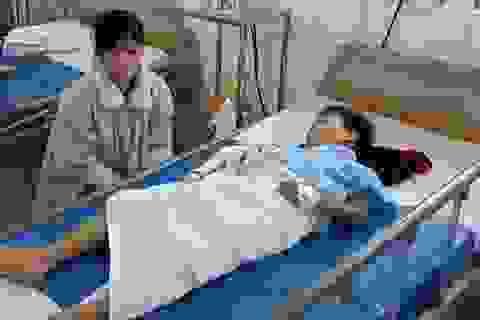 Cần Thơ: Nhiều trẻ em liên tục bị rắn tấn công