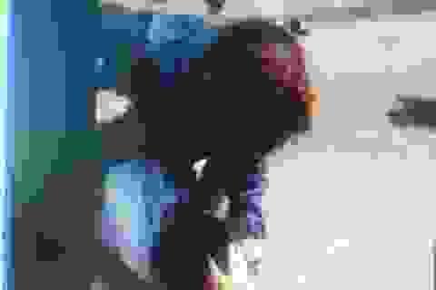 Thiếu nữ ngất xỉu tại chỗ bởi đánh lộn ngoài đường