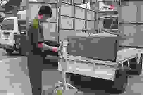 Tuồn hàng trăm con chim lậu qua biên giới vào Việt Nam