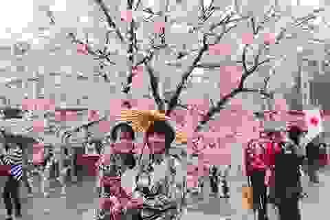Những sự kiện văn hóa, giải trí đặc sắc cuối tuần tại Hà Nội