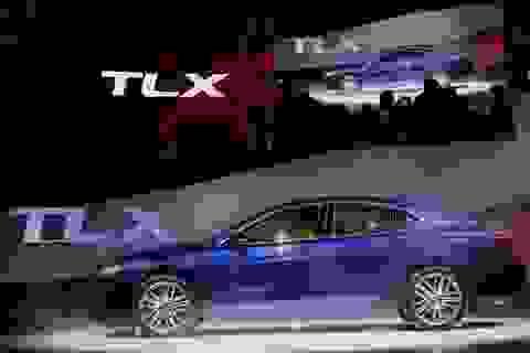 Honda dừng bán xe Acura TLX tại Mỹ do lỗi phanh tay