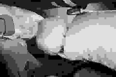 Hơn 40 triệu xe ô tô trên thế giới bị lỗi túi khí
