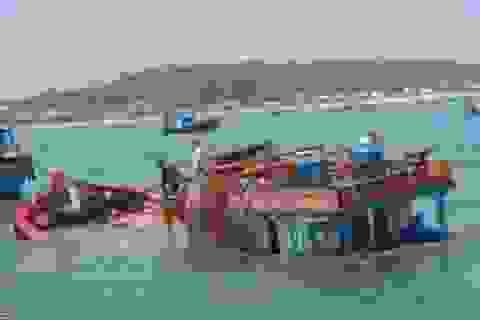 Tàu cá chìm vì va đá ngầm, 12 ngư dân thoát nạn