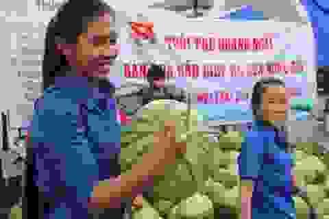 Tình người sưởi ấm người trồng dưa miền Trung