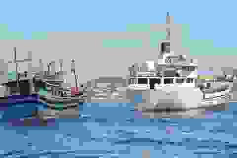 12 ngư dân gặp nạn trên biển được đưa về đảo Lý Sơn an toàn