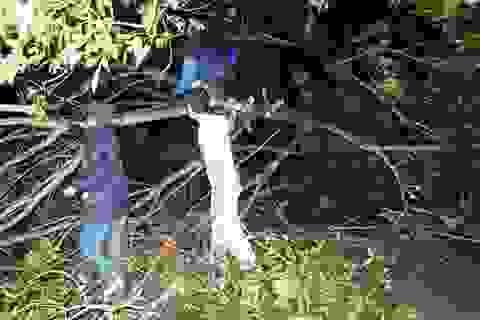 Ít nhất 39 người gặp nạn do bão, khắp miền Bắc mưa lớn