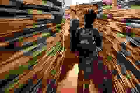 """""""Mê cung"""" khổng lồ được tạo từ 250.000 cuốn sách"""