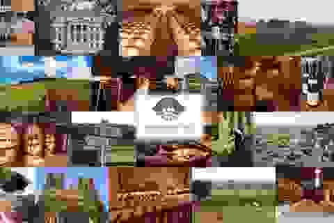 Ghé thăm xứ sở rượu vang Champagne