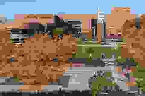 Saginaw Valley State University - Nơi giúp bạn sẵn sàng cho tương lai