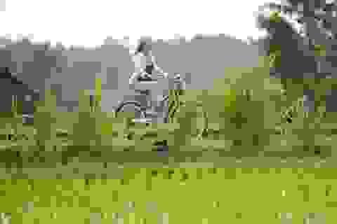 """6 điều """"đừng làm"""" ở Bali, Indonesia"""