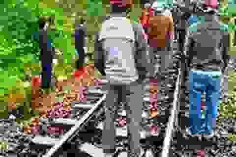 3 người tử vong vì tai nạn đường sắt