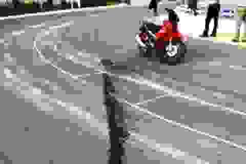 Quảng Bình: Xuất hiện nghi phạm tưới hóa chất phá hoại Quốc lộ 1A