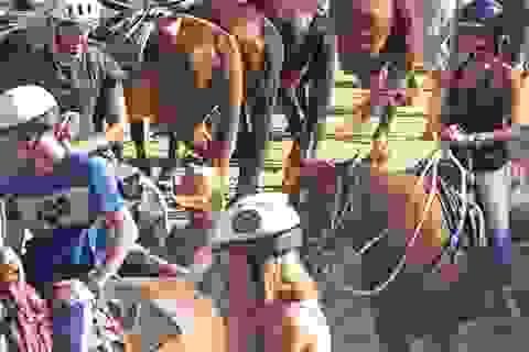 Victoria Beckham cùng chồng đưa các con đi cưỡi ngựa