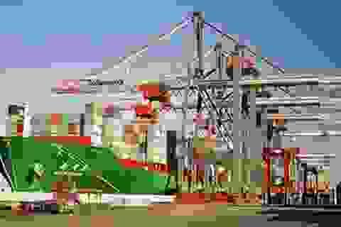 Cơ quan thống kê nói gì về chênh lệch số liệu xuất nhập khẩu với Trung Quốc?