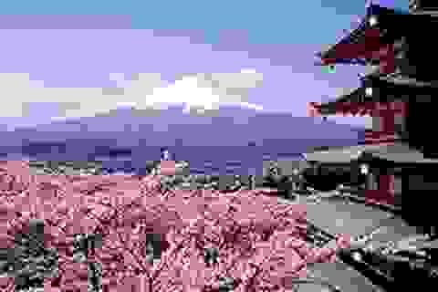 Phỏng vấn, cấp học bổng chương trình vừa học vừa làm du học Nhật Bản