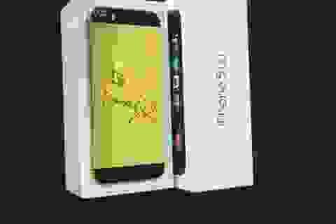 iPhone 5S mạ vàng 24K với ốp lưng đúc ngựa vàng nguyên khối