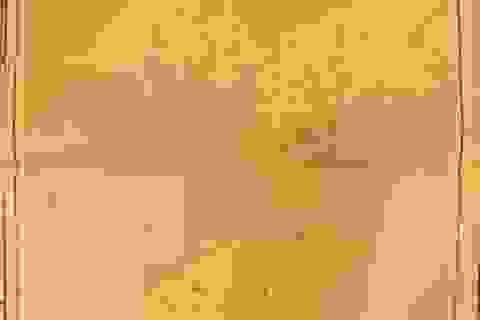 43 bản đồ cổ Trung Quốc không có Hoàng Sa, Trường Sa