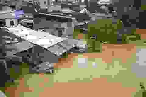 Đà Nẵng: Đề xuất mọi người dân đều đóng quỹ phòng chống thiên tai
