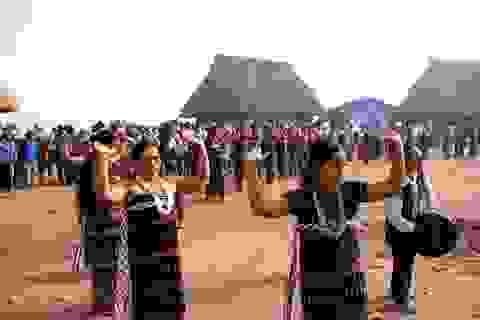 Thành công với mô hình du lịch gắn với bảo tồn văn hóa Cơ tu