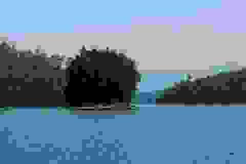 Hồ Phú Ninh - Bức tranh thủy mặc hữu tình