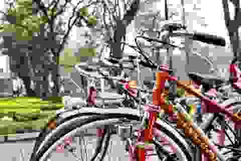 Xe đạp - Sự trở lại của một thú chơi