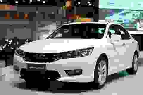 Honda Việt Nam sẽ bán Accord mới và rẻ hơn?
