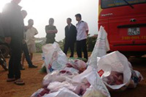 Phát hiện hơn 6 tạ thịt, nội tạng động vật được chở chung với hành khách