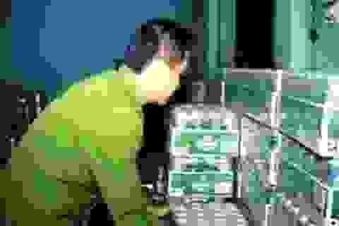Thu giữ hơn 700 chai rượu ngoại nhập lậu