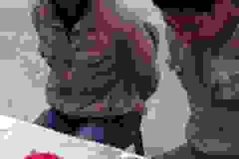 Bắt 2 đối tượng người Lào vận chuyển hơn 10.000 viên ma túy qua biên giới