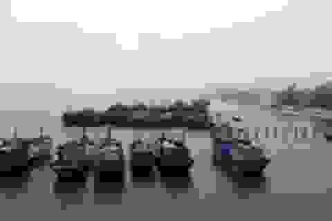 Quảng Trị: Thêm hai ngư dân được vay vốn đóng mới tàu đánh bắt xa bờ