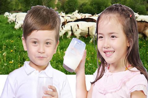 Những điều mẹ cần biết về việc sử dụng sữa dê cho bé