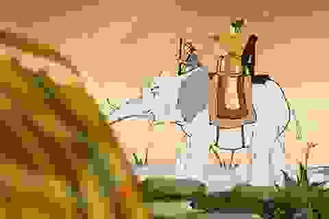 Tìm hiểu lịch sử qua... phim hoạt hình
